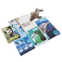 Adopt a Dolphin Gift Pack