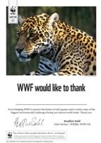 Adopt a Jaguar Certificate